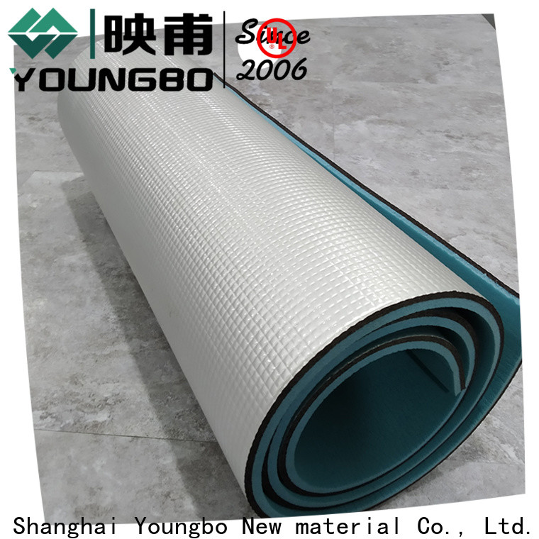 YOUNGBO hot sale camping foam for gym