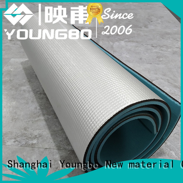 YOUNGBO hot sale outdoor sleeping mat low cost for gym