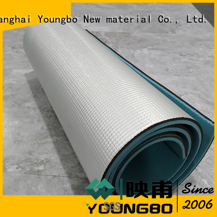 YOUNGBO mat outdoor camping mat for Living Room
